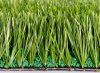 Football Artificial Grass, Artificial Turfgrass (M60)