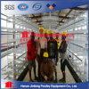 H Type Automatic Layer Chicken Birds Poultry Cages with Best Price