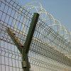 Cheap Galvanized Razor Barbed Wire Coil
