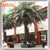 Wholesale Home Decoration 6 Ft Fake Tree Date Palm Tree