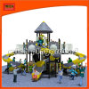 Child Outdoor Playground Equipment with CE Approved (5206A)
