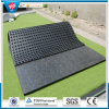 Animal Rubber Mat, Antislip Cow Flooring Horse Mat