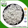 High Quality Fertilizer Granular Ammonium Sulphate Fertilizer