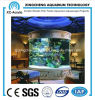 Indoor Large Cylindrical Aquarium