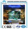 Indoor Large Cylindrical Aquarium