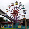 Giant Family Amuement Ride Sky Wheel for Outdoor Playground