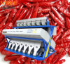 CCD Color Sorter to Sort Pakistan Dry Chilies Good Quality