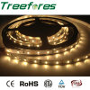 48LED/M 5050 Waterproof LED Strip Light IP65 12V 24V
