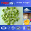 High Quality Dried Processed Dehydrated Green Pepper Particles Granules Bell Manufacturer
