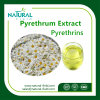 Factory Supply Pyrethrum Extract 25%, 50% Natural Pyrethrins