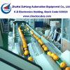 Citrus Sorting Machine/ Fruit Sorters/Weight Grading Machine