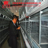 2016 New Design Full Automatic Chicken Breeding Farm Machinery Battery Layer Cage