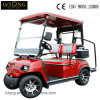 Ce Certificated 2 Person Electric Car
