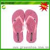 Wholesale Women EVA Foam Slipper (GS-T14232)