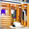 Panel Wood Clothes Closet (Wardrobe) Home Furniture