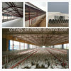 Prefab Poultry Farm House and Automatic Poultry Equipment