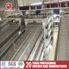 Reasonable Price Automatic Layer Cage for Hot Sale