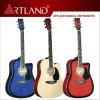 Linder Top Back&Side Acoustic Guitar (AG4110CEQ)