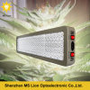 Platinum 900W Dual Veg Bloom LED Grow Light for Medical Plants