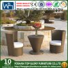 Modern Wicker/Rattan Sofa for Outdoor Furniture (TG-JW53)