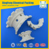 Mass Transfer Efficiency Ceramic Super Intalox Saddle Ring