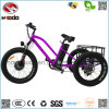 Fat Tire 3 Wheel Cheap Electric Bicycle Lsd Tricycle