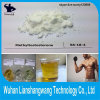 Purity 99% 17-Methyltestosterone CAS 58-18-4 for Men Muscle Gain