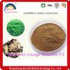 GMP Manufacture ISO Certified Szechwan Lovage Rhizome P. E
