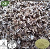 Cosmetic Ingredients Moringa Seed Extract /Moringa Seed P. E.
