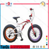 2016 Fat Tire Bike Bicycle Snow Bike for Sale