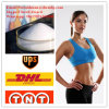 Bodyslimming Weight Loss Healthy Products L-Carnitine Fitness Powder