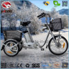 250W Shimano 3 Speed 16 Inch Electric Little Cargo Tricycle for Adult