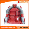 High Quality Carton Character Funny Inflatable Slide (T4-255)