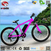 Electric Fat Tire Rear Motor Beach Bicycle with Lithium Battery