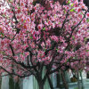 Artificial Peach Tree with Better Color