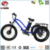 Alloy Fram Fat Tire Electric Beach Tricycle for Sale