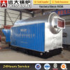 4 ton chain grate stoker coal fired boiler for greenhouse