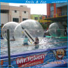 Summer Outdoor Swimming Pool Walking Water Ball for Roller Walk