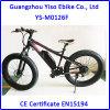 500W 750W Electric Fat Bike Snow Beach Bike