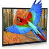 Indoor LED LCD Display HD Video Flexible Screen