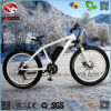 Fat Tire Rear Motor Bicycle Alloy Frame Scooter