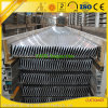 Extruded Aluminium Extrusion Profiles for outdoor Window Blinds/Shutters/Louvers
