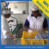 Complete Yogurt Processing Line Machinery