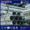 BS1387 Pre-Galvanized Steel Pipe and Tubes