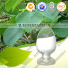 High Quality Natural Stephania Tetrandra Extract Tetrandrine