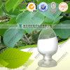 High Quality Natural Stephania Tetrandra Extract Tetrandrine