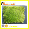 Indoor Soccer Artificial Grass Natural Turf for Football Field