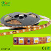 China Popular Design LED Tape (ST-DT5050S-S30)