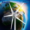 Home Use 600W Wind Turbine Generator {Max 600W}