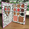Kylie Birthday Collection I Want It All 11colors Eyeshadow Palette